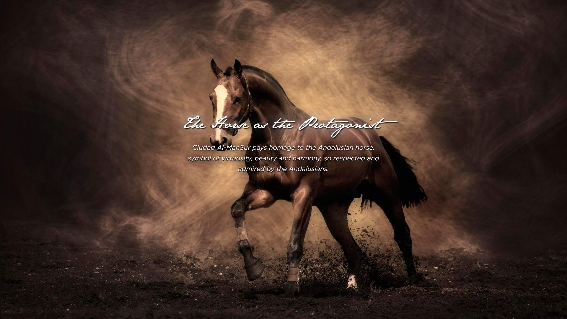 caballo2a